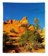Orange Foreground A Blue Blue Sky  Fleece Blanket