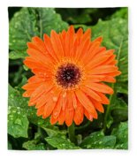 Orange Gerber Daisy 2 Fleece Blanket