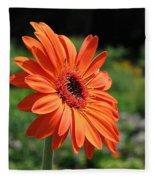 Orange Gerbera Daisy Fleece Blanket