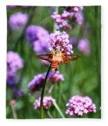 Orange Hummingbird Moth Fleece Blanket