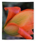 Orange Lady Fleece Blanket