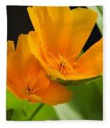 Orange Poppies Fleece Blanket