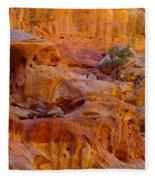Orange Rock Formation Fleece Blanket