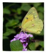 Orange Sulphur Fleece Blanket