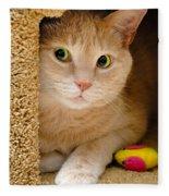 Orange Tabby Cat In Cat Condo Fleece Blanket
