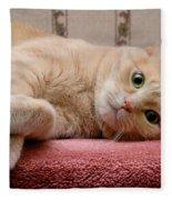 Orange Tabby Cat Lying Down Fleece Blanket