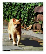 Orange Tabby Taking A Walk Fleece Blanket