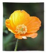 Orange Welsh Poppy Fleece Blanket