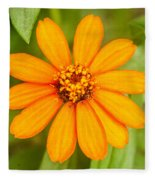 Orange Zenia Fleece Blanket