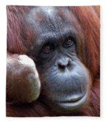 Orangutan Portrait Fleece Blanket