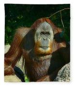 Orangutan Scratches With Stick Fleece Blanket