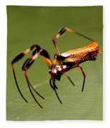 Orb Weaver - Coastal Spider Fleece Blanket