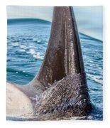 Orca Apex II Fleece Blanket
