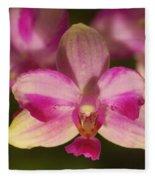 Orchid 144 Fleece Blanket