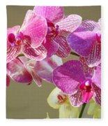 Orchid Flowers Art Prints Pink Orchids Fleece Blanket