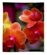 Orchid Melody Fleece Blanket