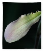Orchid Petal Fleece Blanket