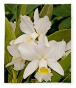 Orchid Sophronitis Fleece Blanket