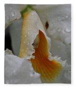 Orchid's Inner Glow Fleece Blanket