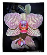 Orchids  Fleece Blanket