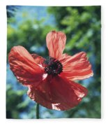 Oriental Poppy Fleece Blanket