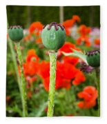 Oriental Poppy Seed Pod Fleece Blanket