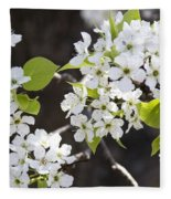 Ornamental Pear Blossoms No. 1 Fleece Blanket