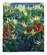 Ornamental Peppers...   # Fleece Blanket