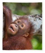 Orphan Baby Orangutan Fleece Blanket