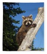 Orphaned Raccoon Fleece Blanket