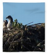 Osprey Chicks In Nest Fleece Blanket