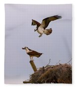Osprey Coming In Fleece Blanket
