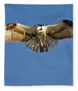 Osprey Hovering Fleece Blanket