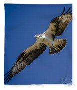 Osprey In Flight Fleece Blanket