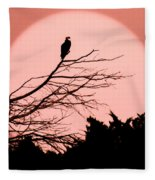 Osprey Moon Fleece Blanket