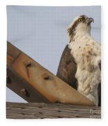 Osprey -seahawk Fleece Blanket