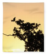Osprey Sunset Fleece Blanket