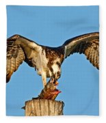 Osprey With Spotted Bass Fleece Blanket