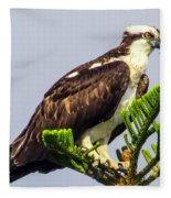 Osprey Fleece Blanket