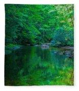 Otter Creek Reflection  Fleece Blanket