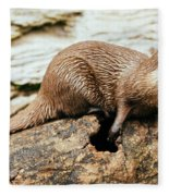 Otter On A Tree Fleece Blanket