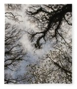 Overhead Trees In Exmoor, United Kingdom Fleece Blanket
