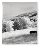 Overlooked Fleece Blanket
