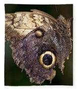 Owl Butterfly Fleece Blanket