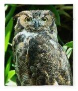 Owl Portrait Fleece Blanket