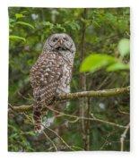 Up - Owl Fleece Blanket