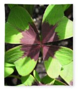 Oxalis Deppei Named Iron Cross Fleece Blanket