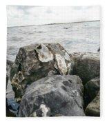 Oysters On The Rocks Fleece Blanket