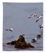 Pacific Landing Fleece Blanket