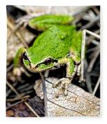 Pacific Tree Frog 2a Fleece Blanket